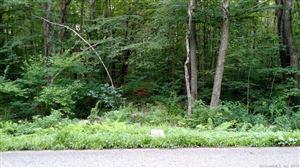 Photo of 0 Wells Wood Road, Columbia, CT 06237 (MLS # 170097293)
