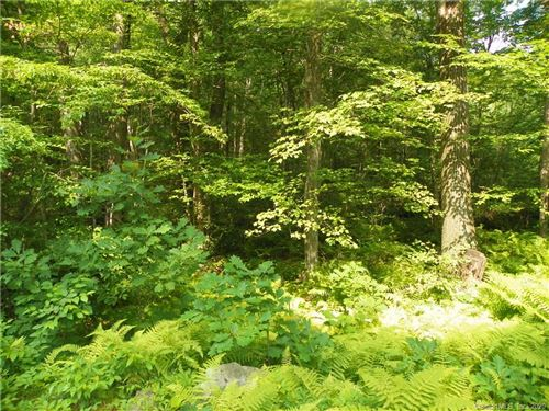 Photo of Lot 14 Plymouth Road, Harwinton, CT 06791 (MLS # 170287301)