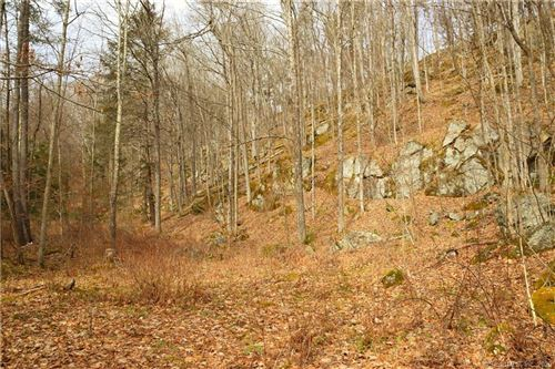Photo of 00 Under Mountain Road, Canaan, CT 06031 (MLS # 170273305)