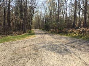 Photo of 48B Birch Road, Lewisboro, NY 10590 (MLS # 99184307)