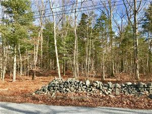 Photo of 169 Anna Farm East Road, North Stonington, CT 06359 (MLS # 170156311)