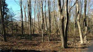Photo of 0 Hickory / Ave A & B Street, Lyme, CT 06371 (MLS # 170060327)