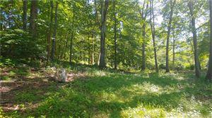 Photo of 1032 Garden Road, Orange, CT 06477 (MLS # 170214334)