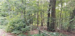 Photo of 110 Birch Mountain Road, Bolton, CT 06043 (MLS # 170217336)
