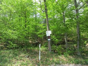 Photo of 0 Guerdat Road, Torrington, CT 06790 (MLS # 170044344)