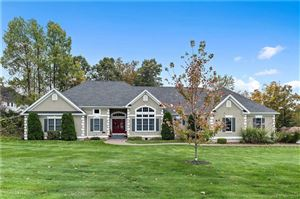 Photo of 131 Valley View Court, Southington, CT 06489 (MLS # 170245349)