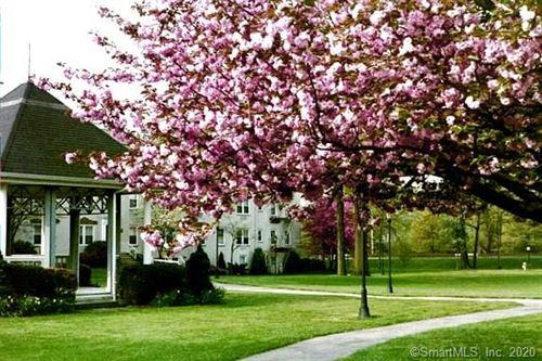 Photo of 124 Woodside Green #2C, Stamford, CT 06901 (MLS # 170305353)