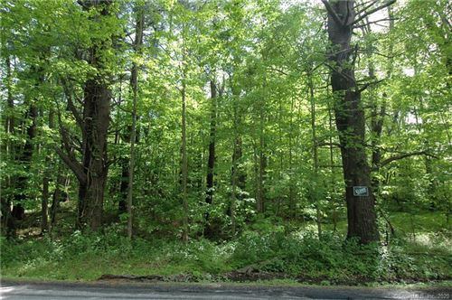 Photo of 00 Campville Road, Litchfield, CT 06778 (MLS # 170348359)