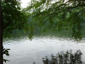 Photo of 11 Mohawk Trail, Newtown, CT 06482 (MLS # 170147374)