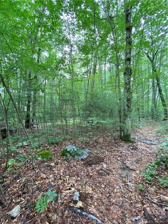 Photo of 39 Laurelwood Pond Lane, New Hartford, CT 06057 (MLS # 170416377)