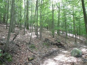 Photo of NONE Upper Fish Rock Road, Southbury, CT 06488 (MLS # W10056386)