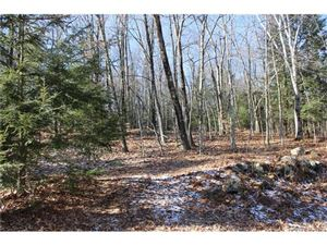 Photo of 00 Donahue Rd Extension, Litchfield, CT 06750 (MLS # L10103394)