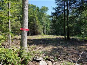 Photo of 17 Lake Woods Lane, Eastford, CT 06242 (MLS # 170083403)