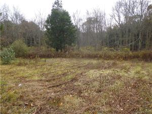 Photo of 74A Bennett Pond Road, Canterbury, CT 06331 (MLS # 170074407)