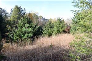 Photo of 138 Green Hill Road, Killingworth, CT 06419 (MLS # 170051410)