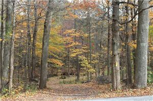 Photo of 00 Fern Avenue, Litchfield, CT 06759 (MLS # 170027416)