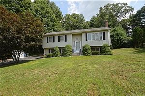 Photo of 393 Cabin Road, Colchester, CT 06415 (MLS # 170114420)