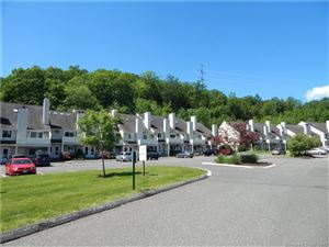 Photo of 66 Willow Springs #66, New Milford, CT 06776 (MLS # 170171420)