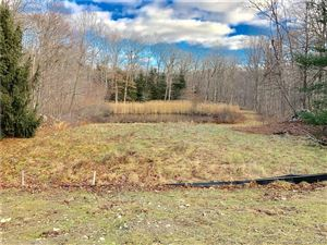 Photo of 2B Powder Horn Hill, Weston, CT 06883 (MLS # 170157424)