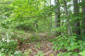 Photo of 100 Mountain Spring Road, Farmington, CT 06032 (MLS # 170061437)