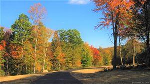 Photo of 3 Evergreen Crossing Crossing, New Hartford, CT 06057 (MLS # 170100439)