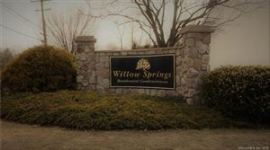 Photo of 191 Willow Springs #191, New Milford, CT 06776 (MLS # 170206443)