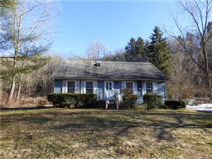 Photo of 13 Christian Street, Washington, CT 06777 (MLS # 170184445)