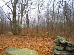 Photo of 28 Wells Woods, Columbia, CT 06237 (MLS # 170214452)