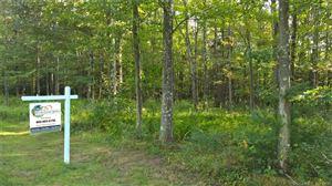 Photo of 11 Stonefield Way, New Hartford, CT 06057 (MLS # 170081456)