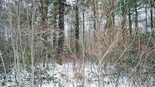 Photo of 0 Bohun (map 46 Lot 11) Road, Colebrook, CT 06021 (MLS # 170053457)
