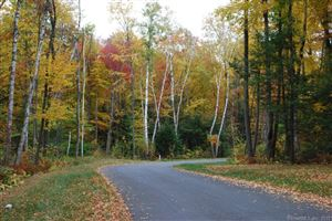 Photo of 11 Clemons Spring Road, Granby, CT 06035 (MLS # 170241458)