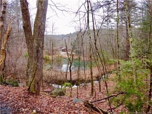 Photo of 60 Warner Road, Barkhamsted, CT 06063 (MLS # 170074459)