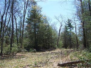 Photo of 11 Route 198, Woodstock, CT 06281 (MLS # 170112465)