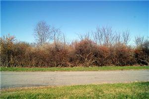 Photo of 86 Jon  Barrett Road, Patterson, NY 12563 (MLS # 99126473)