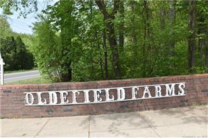 Photo of 161 Oldefield Farms #161, Enfield, CT 06082 (MLS # 170083478)