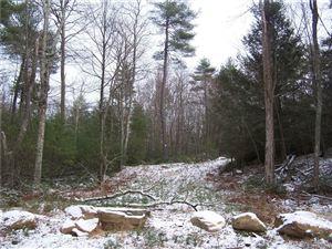 Photo of 13 Route 198, Woodstock, CT 06281 (MLS # 170112483)