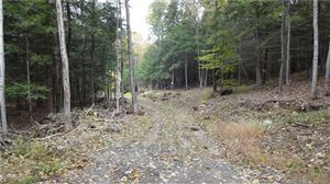 Photo of 0 Pitch Road, Litchfield, CT 06759 (MLS # 170140492)