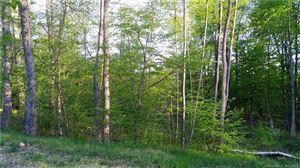 Photo of 312 Merrow Road, Tolland, CT 06084 (MLS # 170186497)