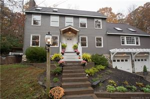 Photo of 119 Sheepskin Hollow Road, East Haddam, CT 06423 (MLS # 170247506)