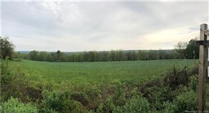 Photo of 618 Hill Road, Harwinton, CT 06791 (MLS # 170109511)