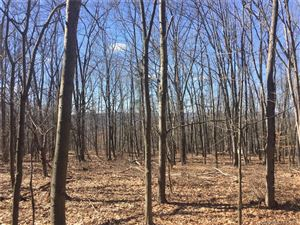 Photo of 75 2nd Hill Road, New Milford, CT 06776 (MLS # 170062523)