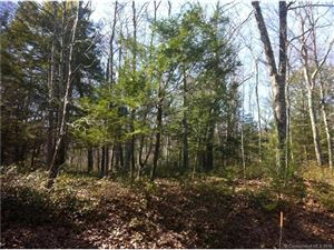 Photo of Lot 92 West Hyerdale Drive, Goshen, CT 06756 (MLS # L10107528)