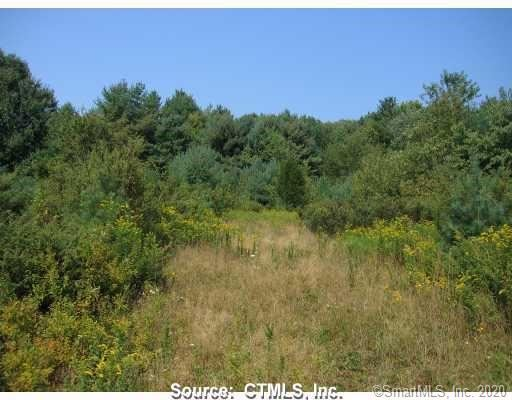 Photo of 5 Maple View Trail, Litchfield, CT 06759 (MLS # 170337531)