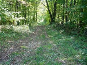 Photo of 0 Butter Road, Sharon, CT 06069 (MLS # 170021552)