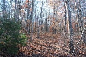 Photo of 0 Scenic View Drive, Litchfield, CT 06759 (MLS # 170052553)