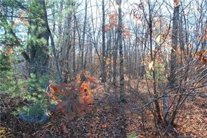 Tiny photo for 0 Scenic View Drive, Litchfield, CT 06759 (MLS # 170052553)