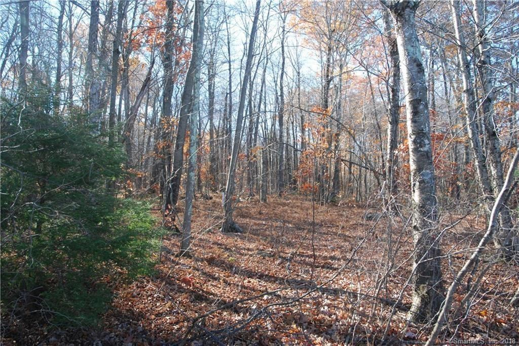 Photo for 0 Scenic View Drive, Litchfield, CT 06759 (MLS # 170052553)
