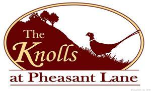 Photo of 110 Pheasant Lane, Granby, CT 06035 (MLS # 170066556)