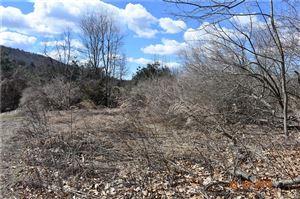 Photo of 284 Cook Lane, Beacon Falls, CT 06403 (MLS # 170064565)