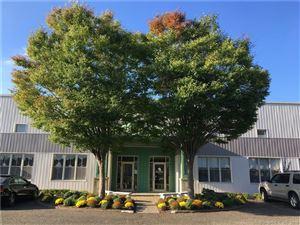 Photo of 11 Research Drive #1, Woodbridge, CT 06525 (MLS # 170138584)